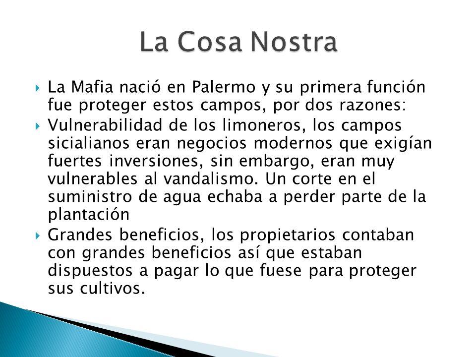 La Cosa Nostra La Mafia nació en Palermo y su primera función fue proteger estos campos, por dos razones: