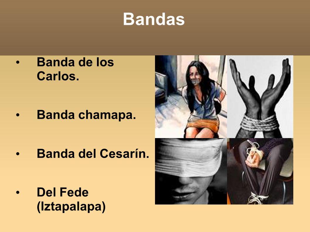 Bandas Banda de los Carlos. Banda chamapa. Banda del Cesarín.