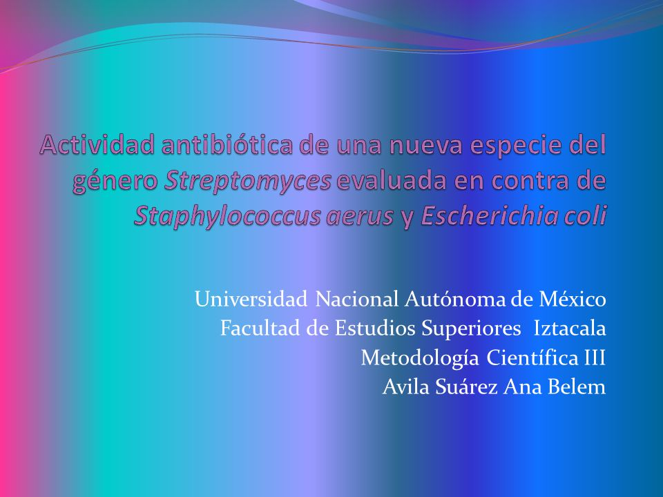 Actividad antibiótica de una nueva especie del género Streptomyces evaluada en contra de Staphylococcus aerus y Escherichia coli