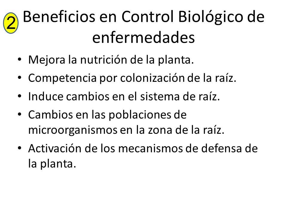 Beneficios en Control Biológico de enfermedades