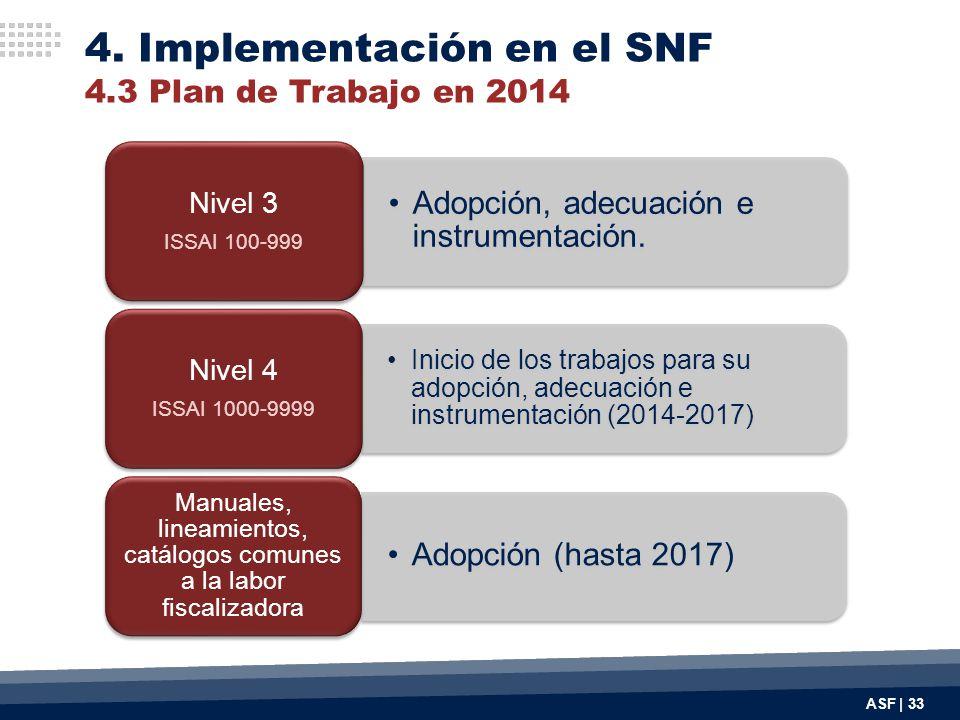 4. Implementación en el SNF 4.3 Plan de Trabajo en 2014