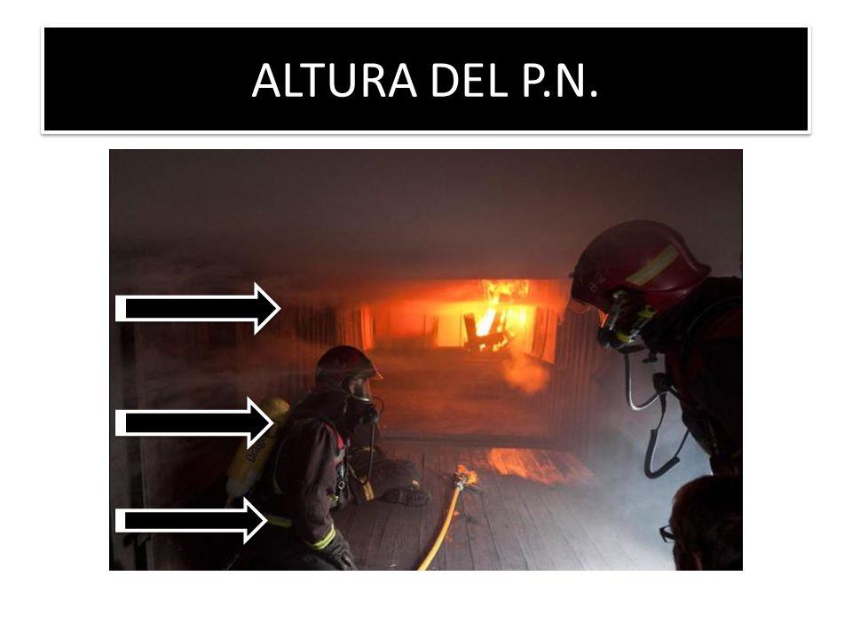 ALTURA DEL P.N.