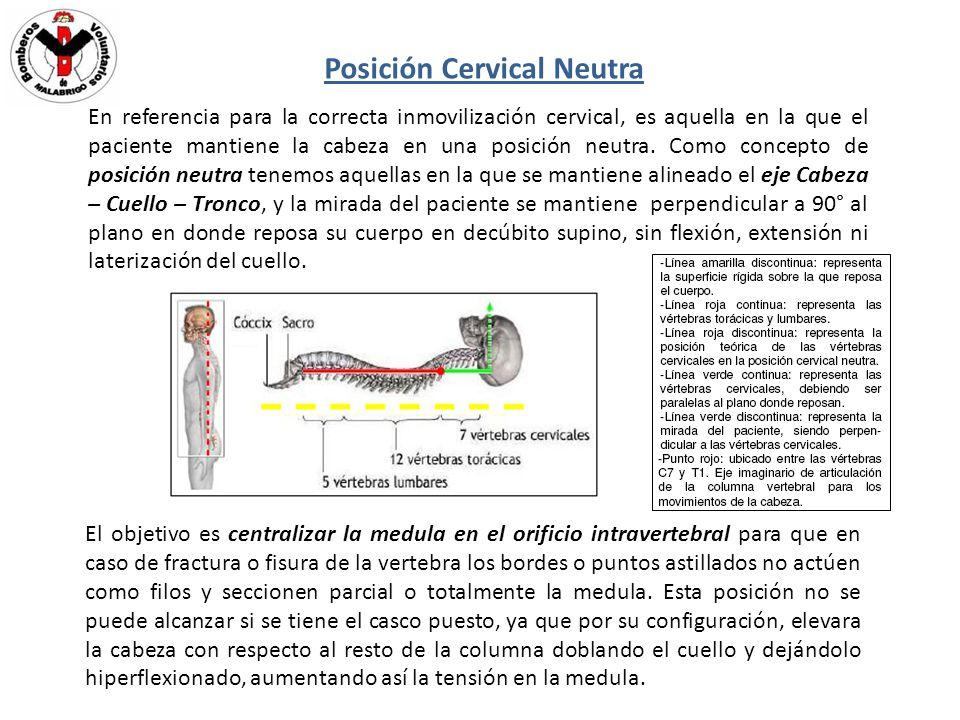 Posición Cervical Neutra