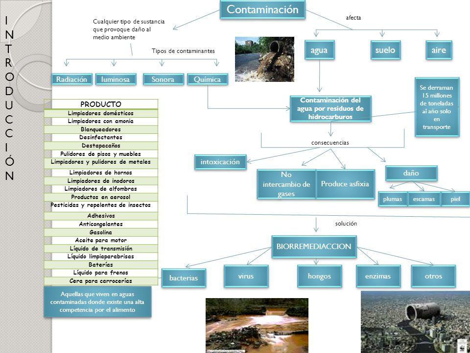Contaminación I N T R O D U C Ó agua suelo aire Radiación luminosa