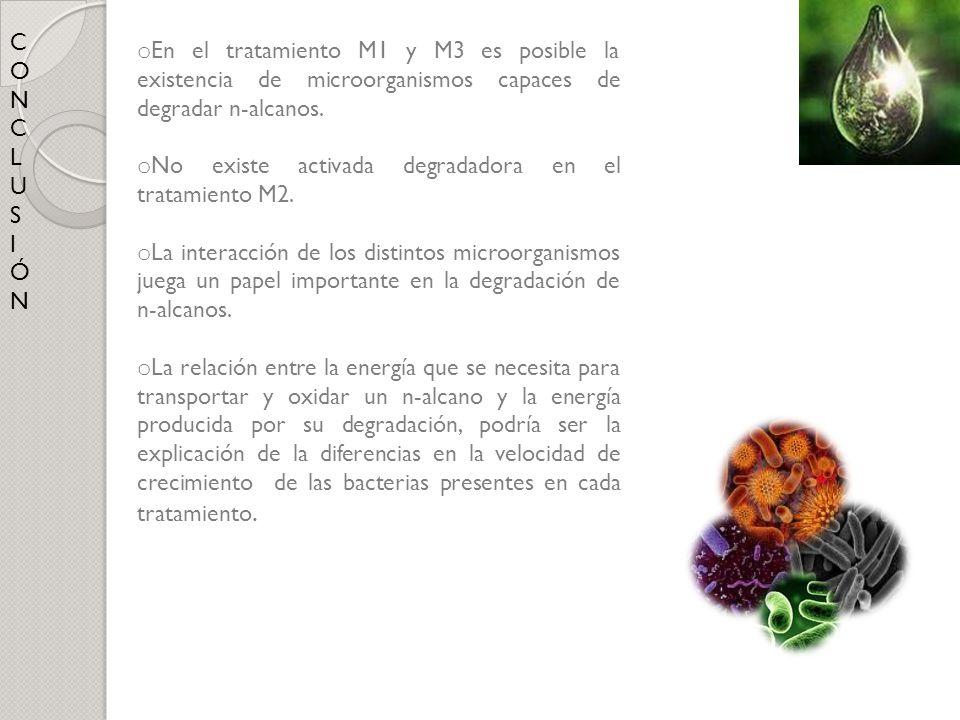 C O. N. L. U. S. I. Ó. En el tratamiento M1 y M3 es posible la existencia de microorganismos capaces de degradar n-alcanos.