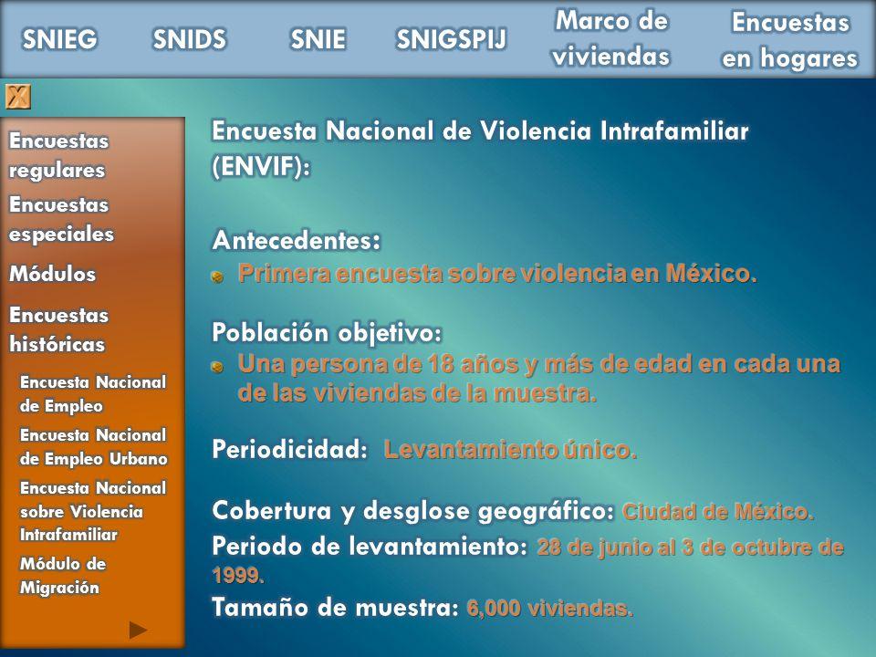 Encuesta Nacional de Violencia Intrafamiliar (ENVIF):
