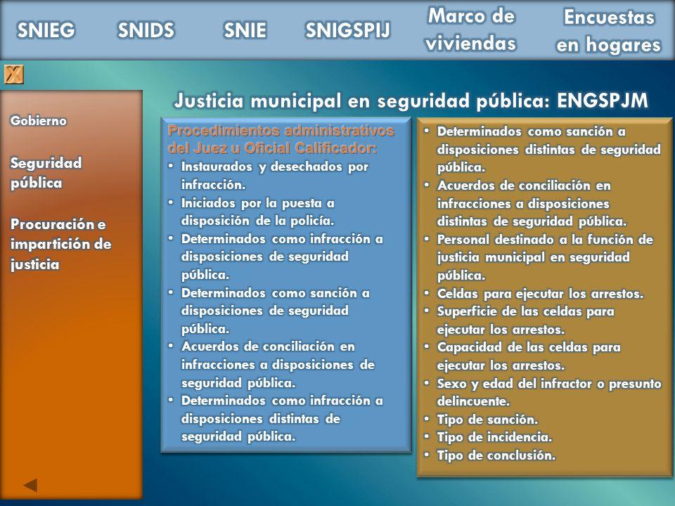 Justicia municipal en seguridad pública: ENGSPJM