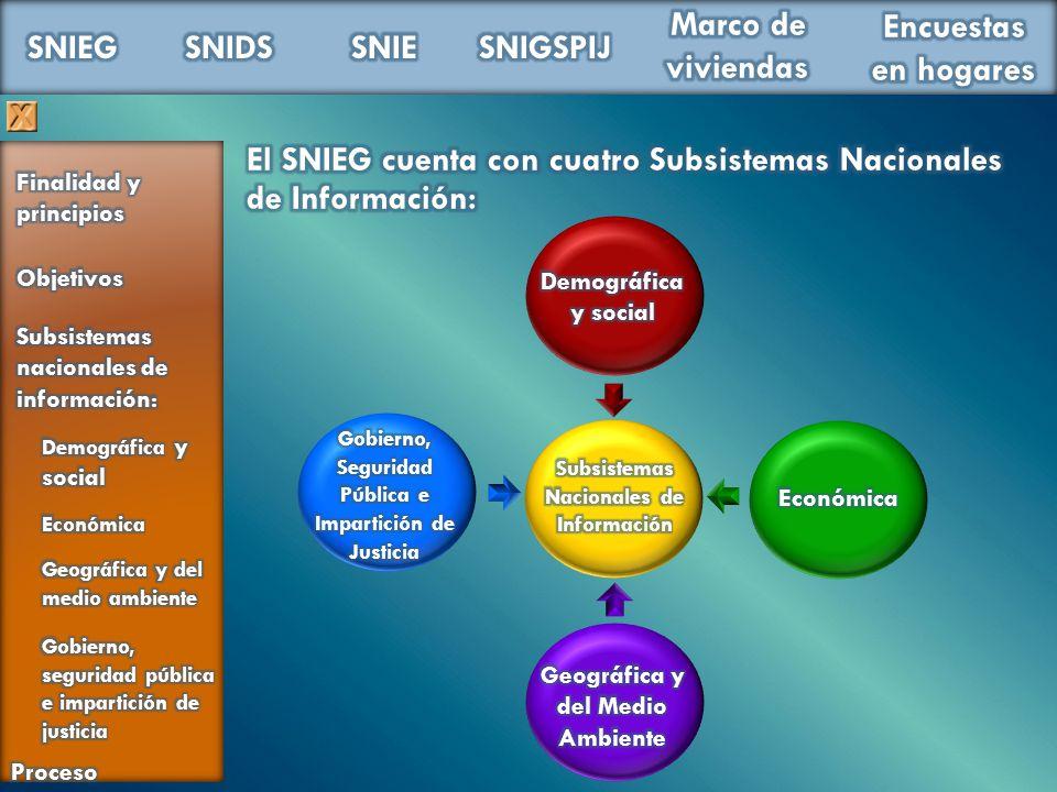 El SNIEG cuenta con cuatro Subsistemas Nacionales de Información:
