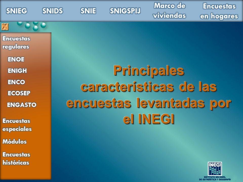 Principales características de las encuestas levantadas por el INEGI