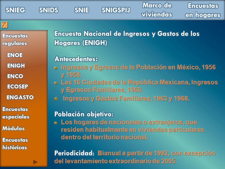 Encuesta Nacional de Ingresos y Gastos de los Hogares (ENIGH)