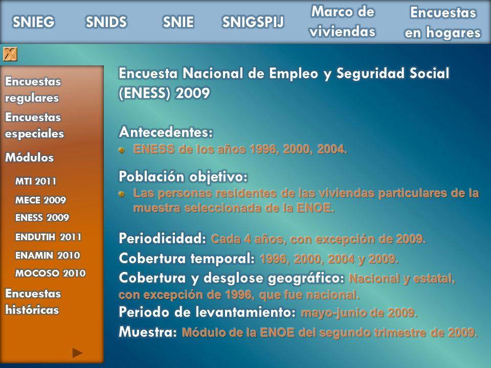 Encuesta Nacional de Empleo y Seguridad Social (ENESS) 2009