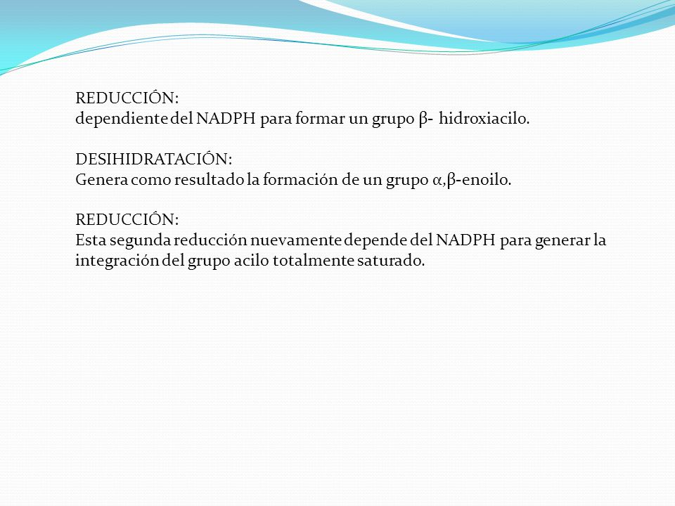 REDUCCIÓN: dependiente del NADPH para formar un grupo β- hidroxiacilo. DESIHIDRATACIÓN: Genera como resultado la formación de un grupo α,β-enoilo.