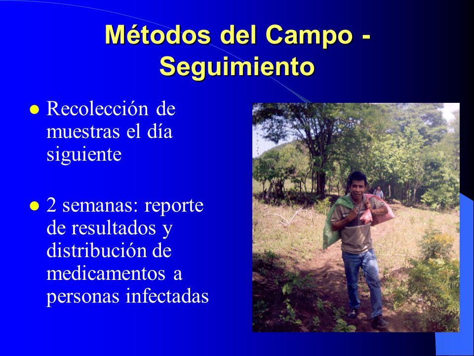 Métodos del Campo - Seguimiento