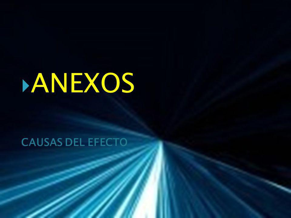 ANEXOS CAUSAS DEL EFECTO