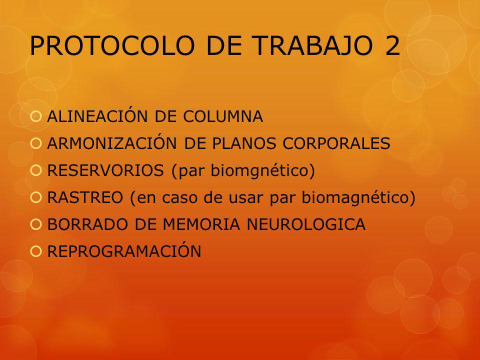 PROTOCOLO DE TRABAJO 2 ALINEACIÓN DE COLUMNA