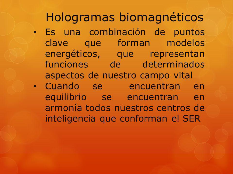 Hologramas biomagnéticos