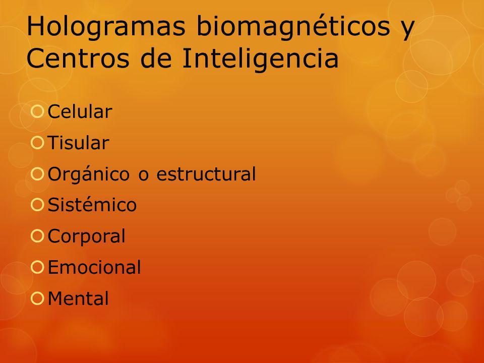 Hologramas biomagnéticos y Centros de Inteligencia