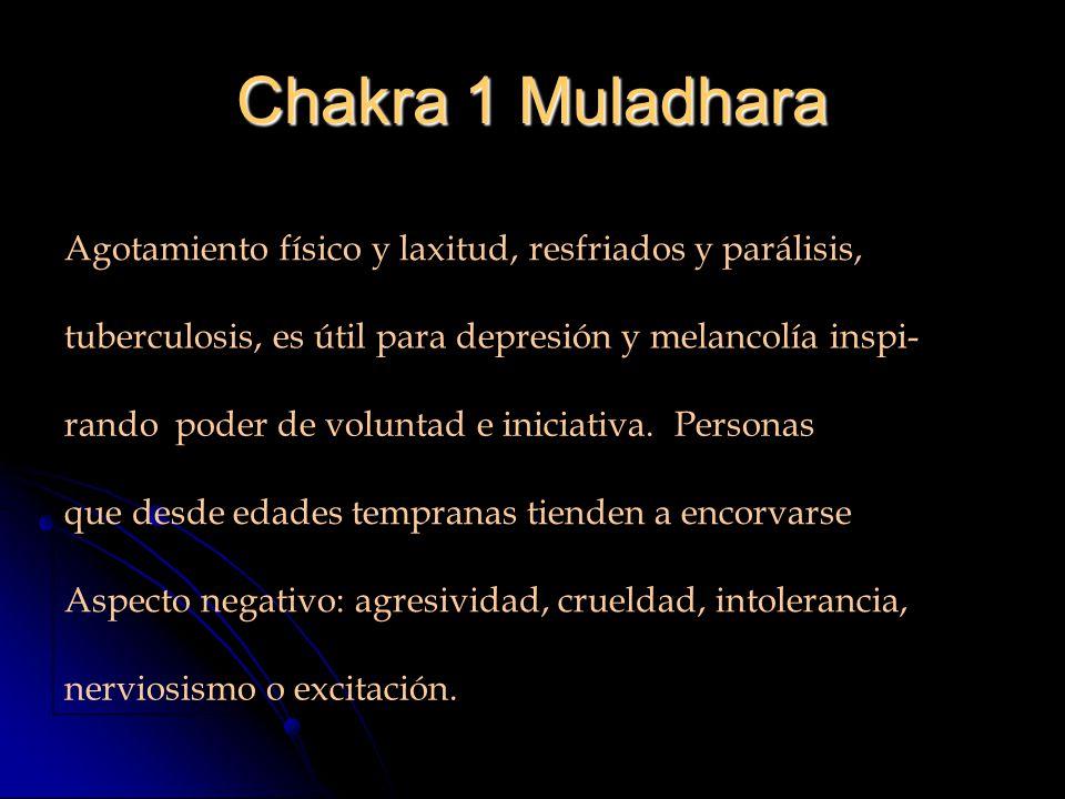Chakra 1 Muladhara Agotamiento físico y laxitud, resfriados y parálisis, tuberculosis, es útil para depresión y melancolía inspi-