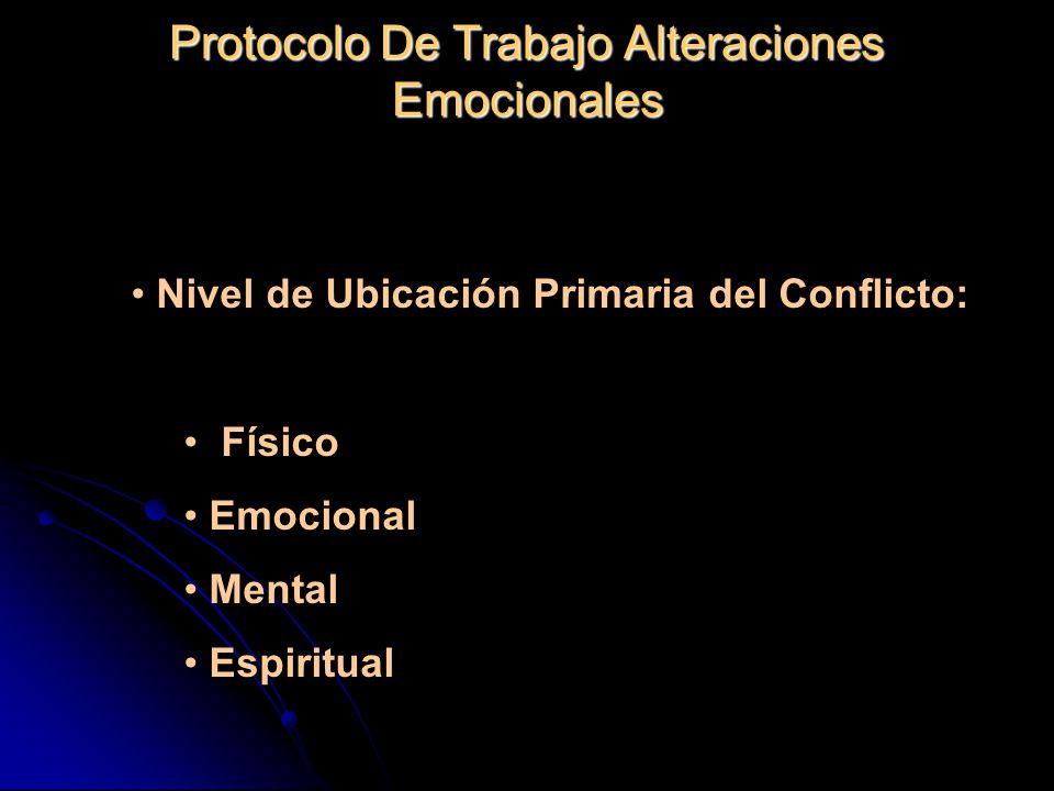 Protocolo De Trabajo Alteraciones Emocionales