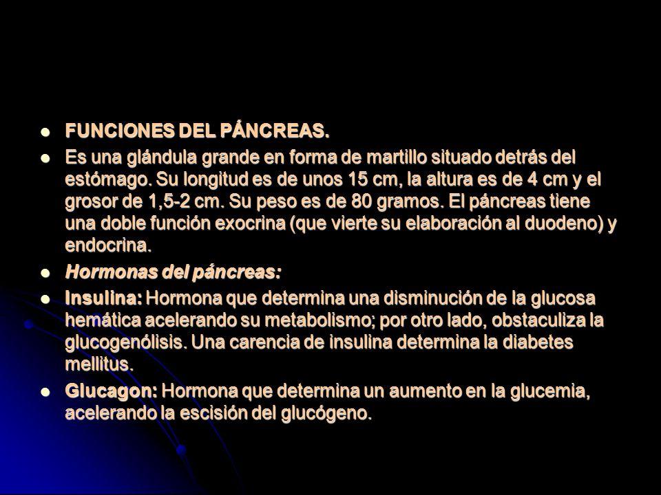 FUNCIONES DEL PÁNCREAS.
