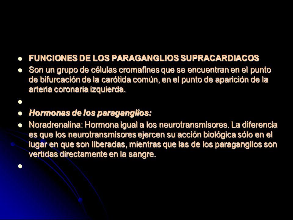 FUNCIONES DE LOS PARAGANGLIOS SUPRACARDIACOS
