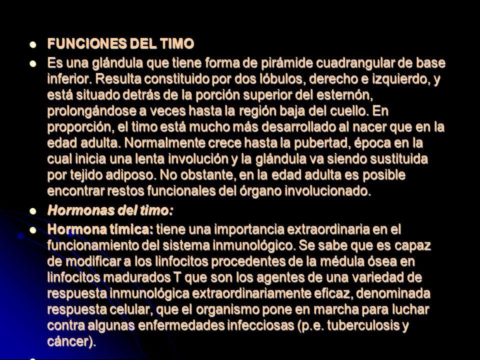 FUNCIONES DEL TIMO