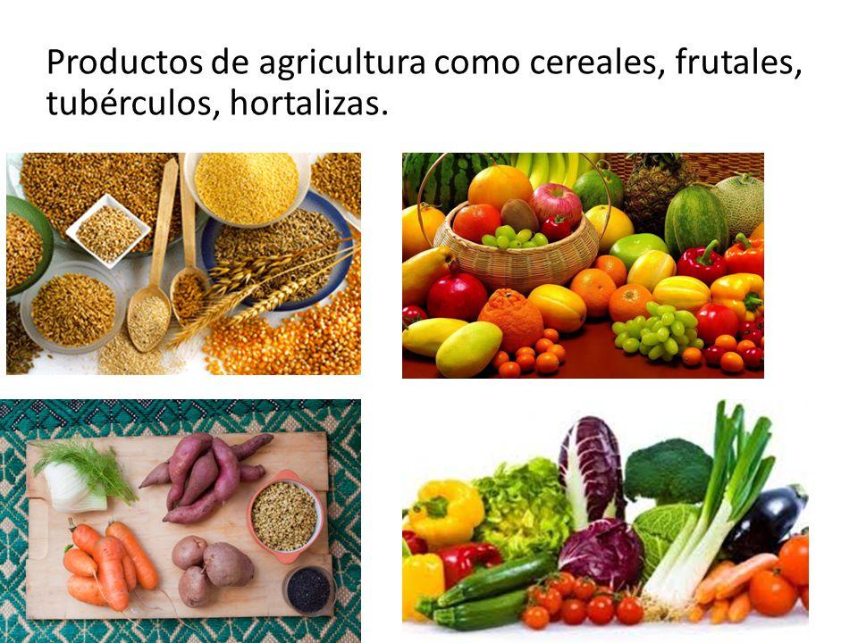 Productos de agricultura como cereales, frutales, tubérculos, hortalizas.