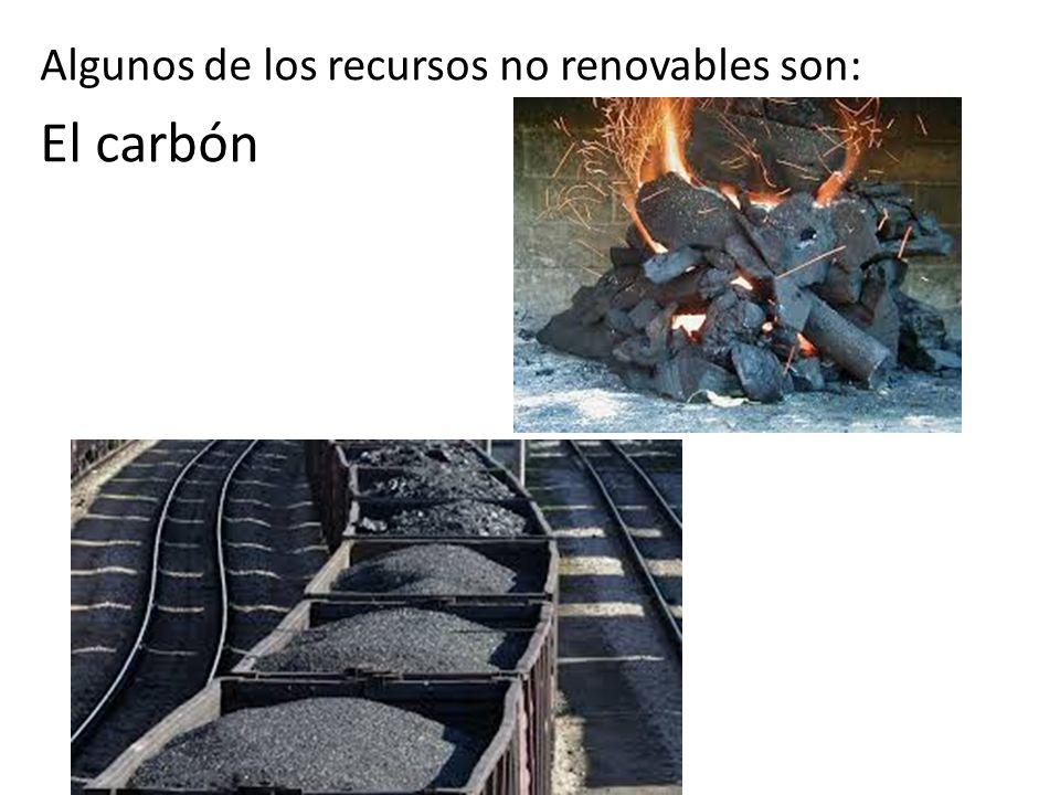 Algunos de los recursos no renovables son: