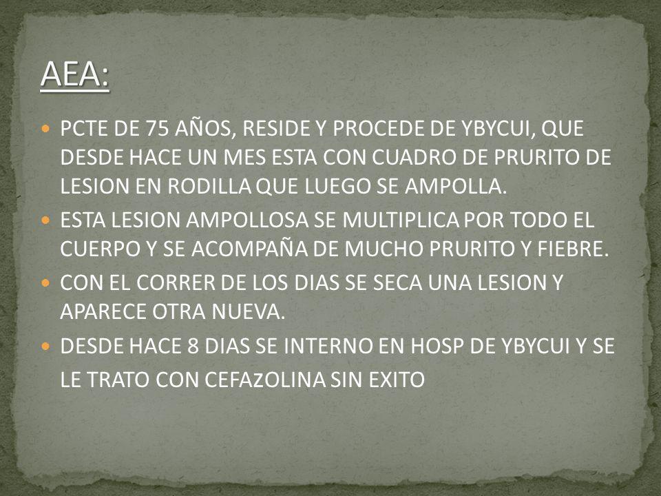 AEA: PCTE DE 75 AÑOS, RESIDE Y PROCEDE DE YBYCUI, QUE DESDE HACE UN MES ESTA CON CUADRO DE PRURITO DE LESION EN RODILLA QUE LUEGO SE AMPOLLA.