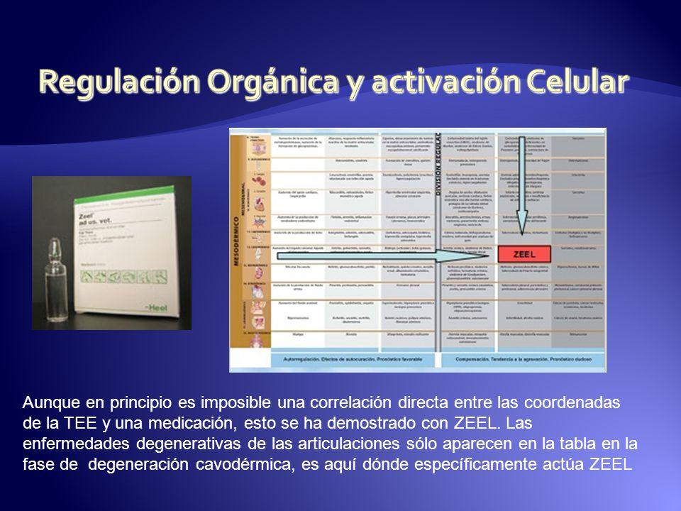 Regulación Orgánica y activación Celular