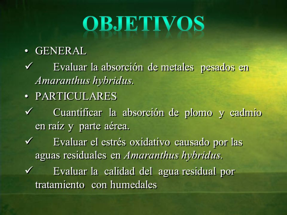 Objetivos GENERAL. Evaluar la absorción de metales pesados en Amaranthus hybridus. PARTICULARES.