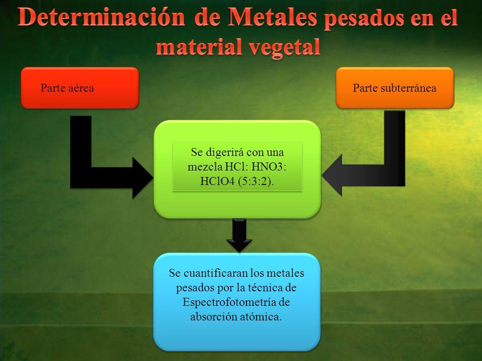 Determinación de Metales pesados en el material vegetal