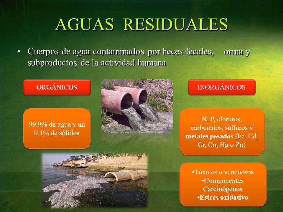 AGUAS RESIDUALES Cuerpos de agua contaminados por heces fecales, orina y subproductos de la actividad humana.