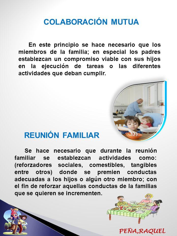 COLABORACIÓN MUTUA REUNIÓN FAMILIAR