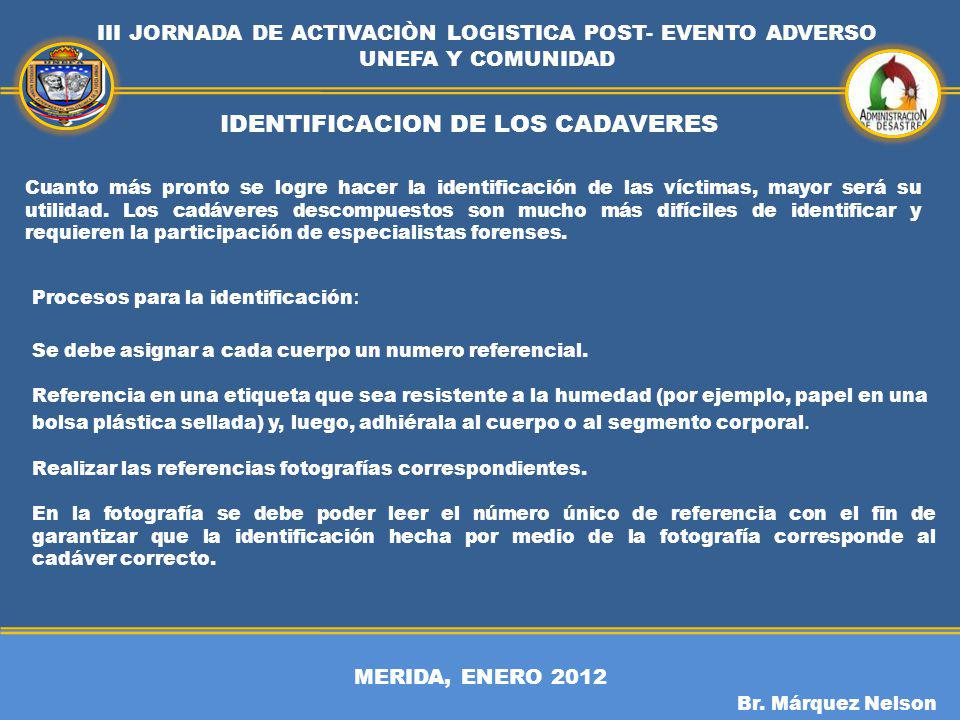 IDENTIFICACION DE LOS CADAVERES