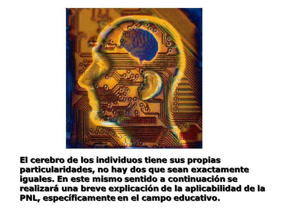 El cerebro de los individuos tiene sus propias particularidades, no hay dos que sean exactamente iguales.