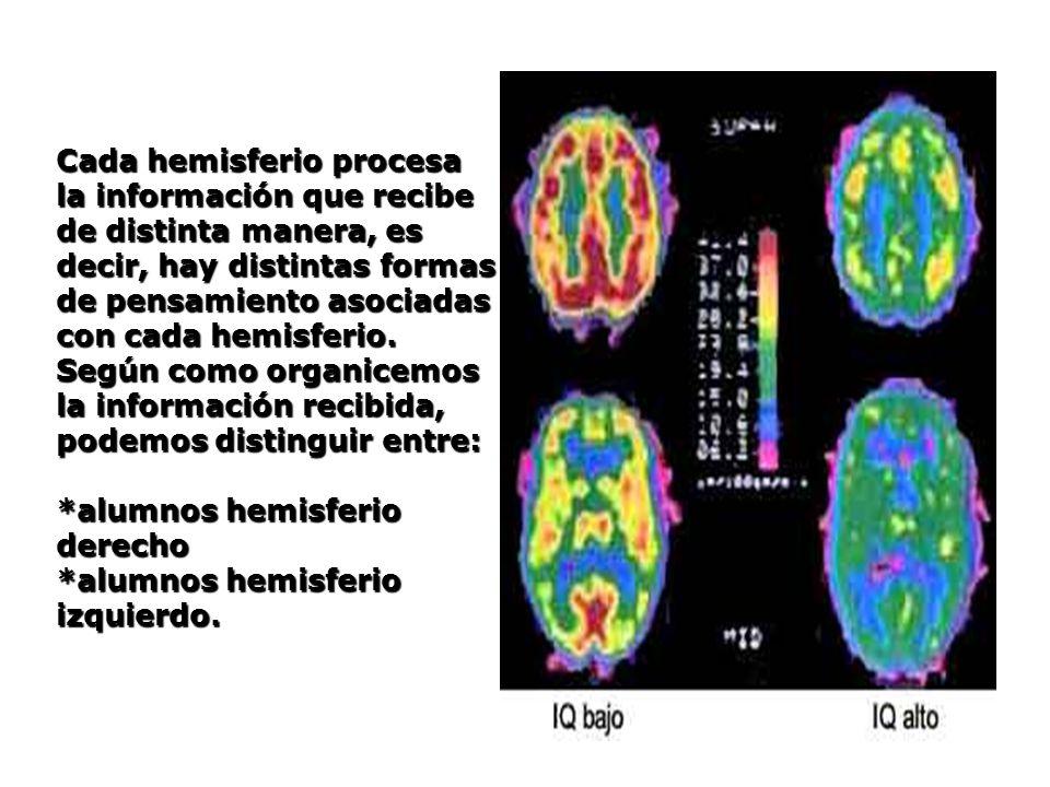 Cada hemisferio procesa la información que recibe de distinta manera, es decir, hay distintas formas de pensamiento asociadas con cada hemisferio.