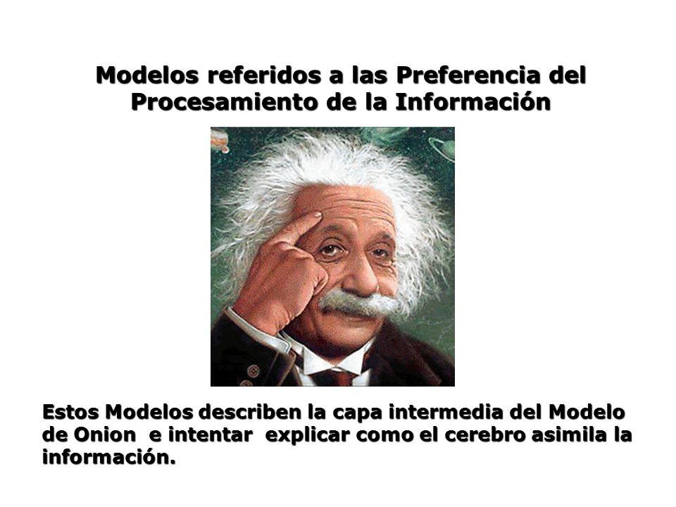 Modelos referidos a las Preferencia del Procesamiento de la Información