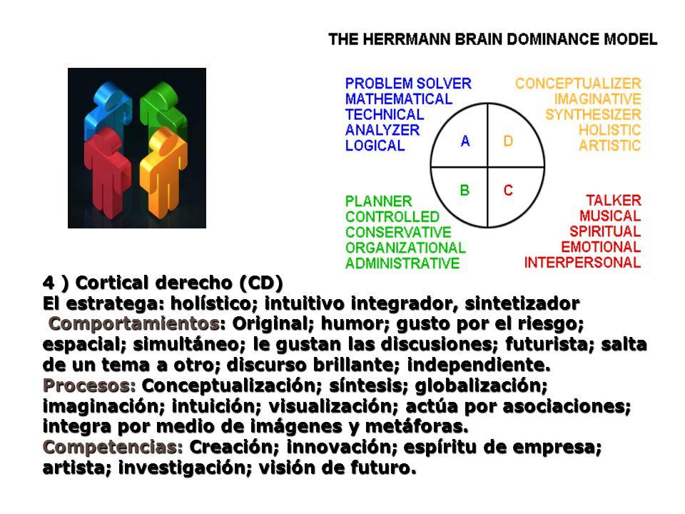 4 ) Cortical derecho (CD)