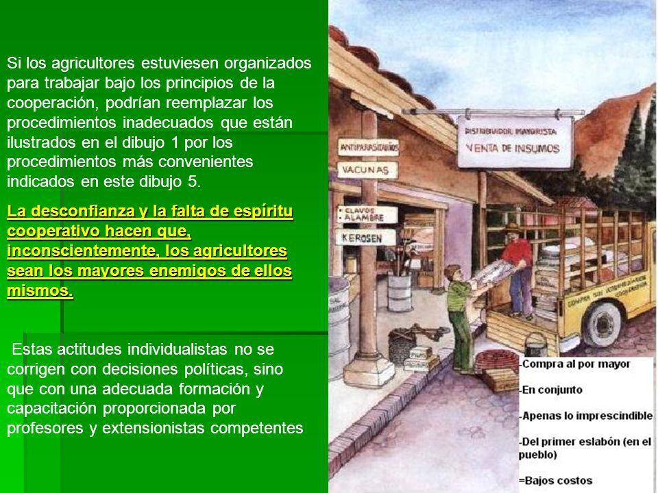 Si los agricultores estuviesen organizados para trabajar bajo los principios de la cooperación, podrían reemplazar los procedimientos inadecuados que están ilustrados en el dibujo 1 por los procedimientos más convenientes indicados en este dibujo 5.