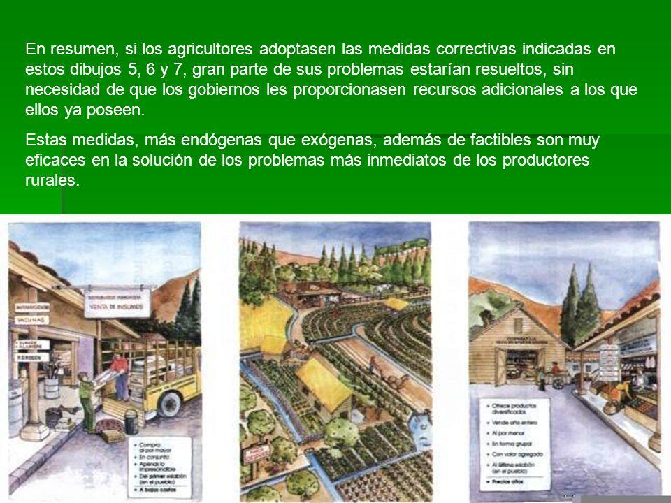 En resumen, si los agricultores adoptasen las medidas correctivas indicadas en estos dibujos 5, 6 y 7, gran parte de sus problemas estarían resueltos, sin necesidad de que los gobiernos les proporcionasen recursos adicionales a los que ellos ya poseen.