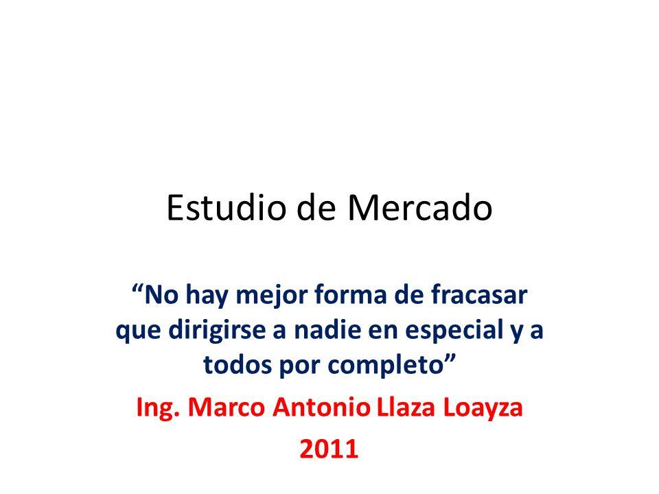 Ing. Marco Antonio Llaza Loayza