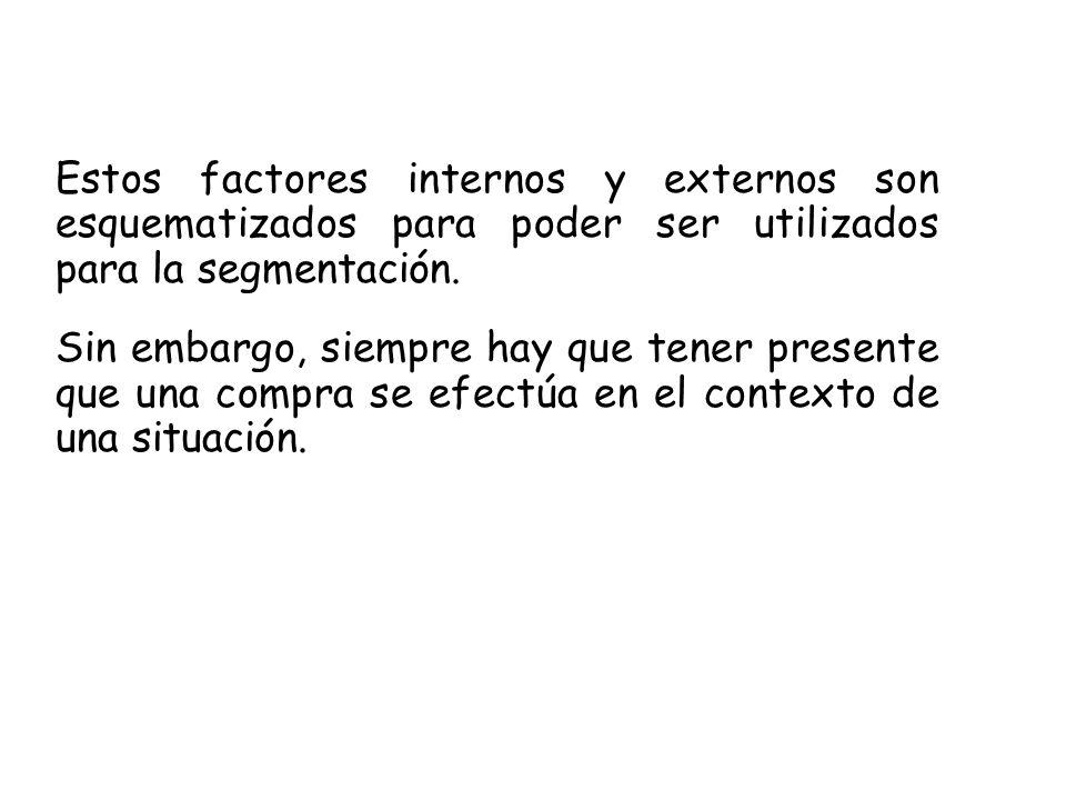 Estos factores internos y externos son esquematizados para poder ser utilizados para la segmentación.