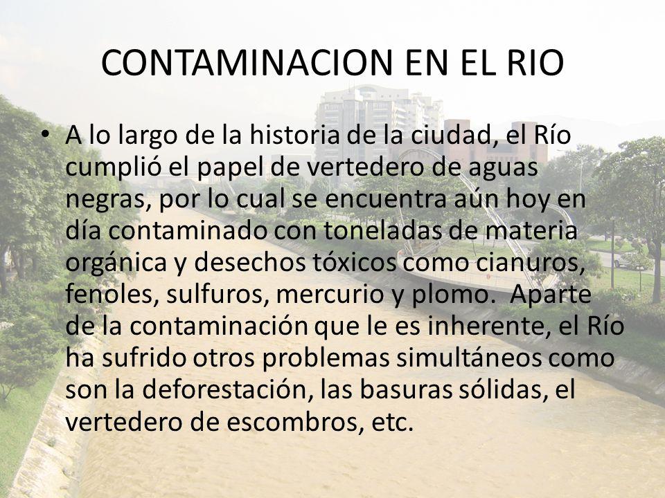CONTAMINACION EN EL RIO
