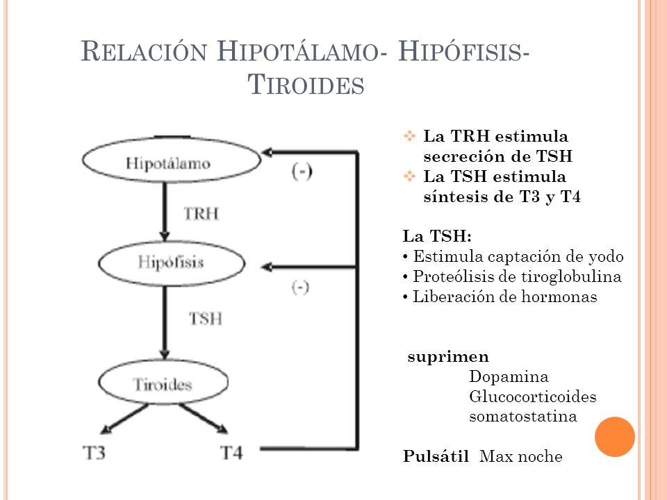 Relación Hipotálamo- Hipófisis- Tiroides