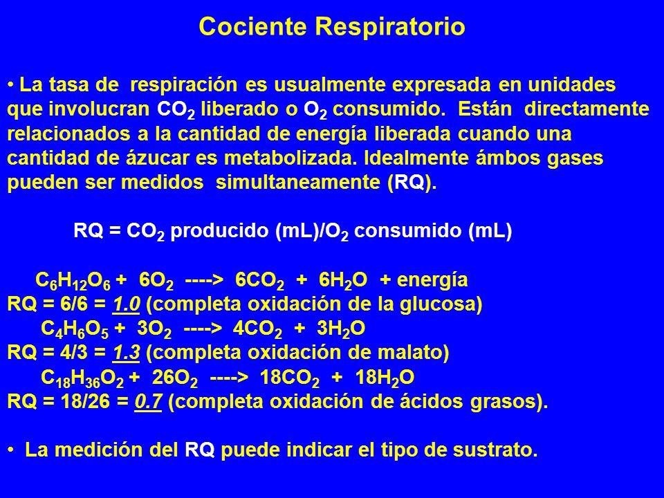 Cociente Respiratorio