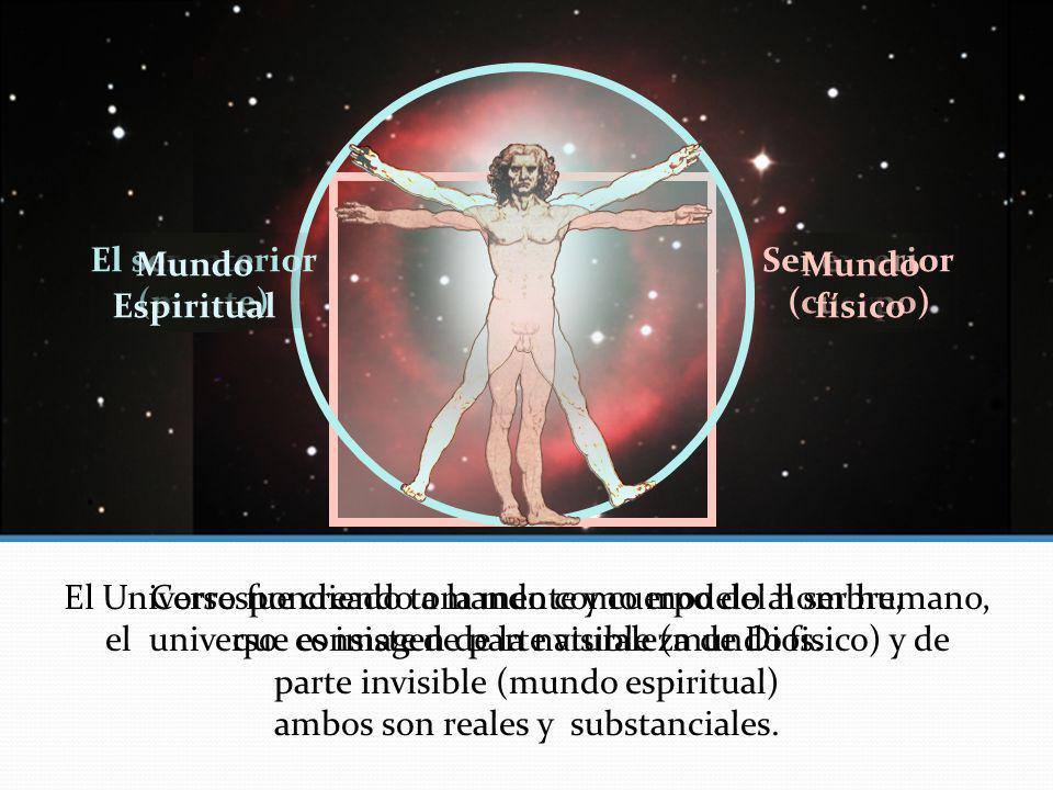 El Universo fue creado tomando como modelo al ser humano,