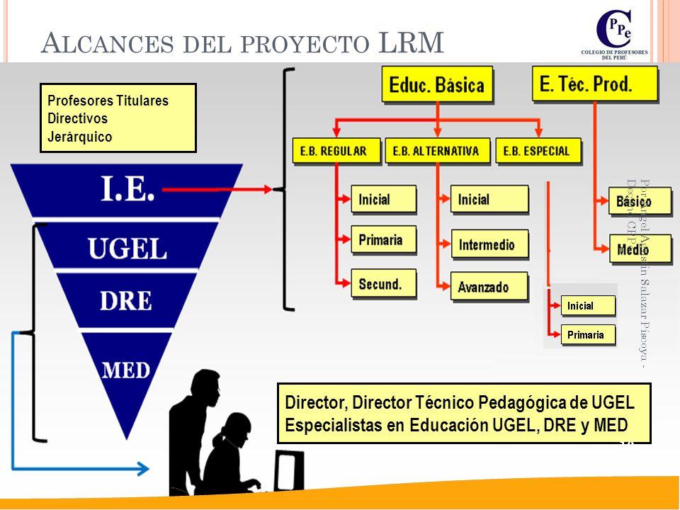 Alcances del proyecto LRM