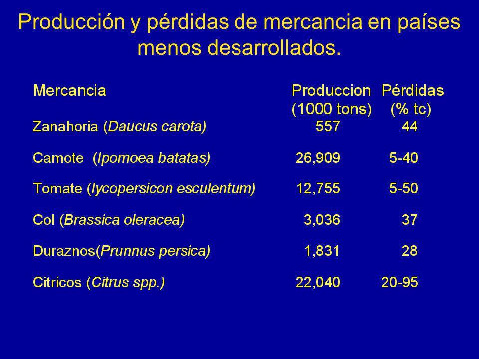 Producción y pérdidas de mercancia en países menos desarrollados.
