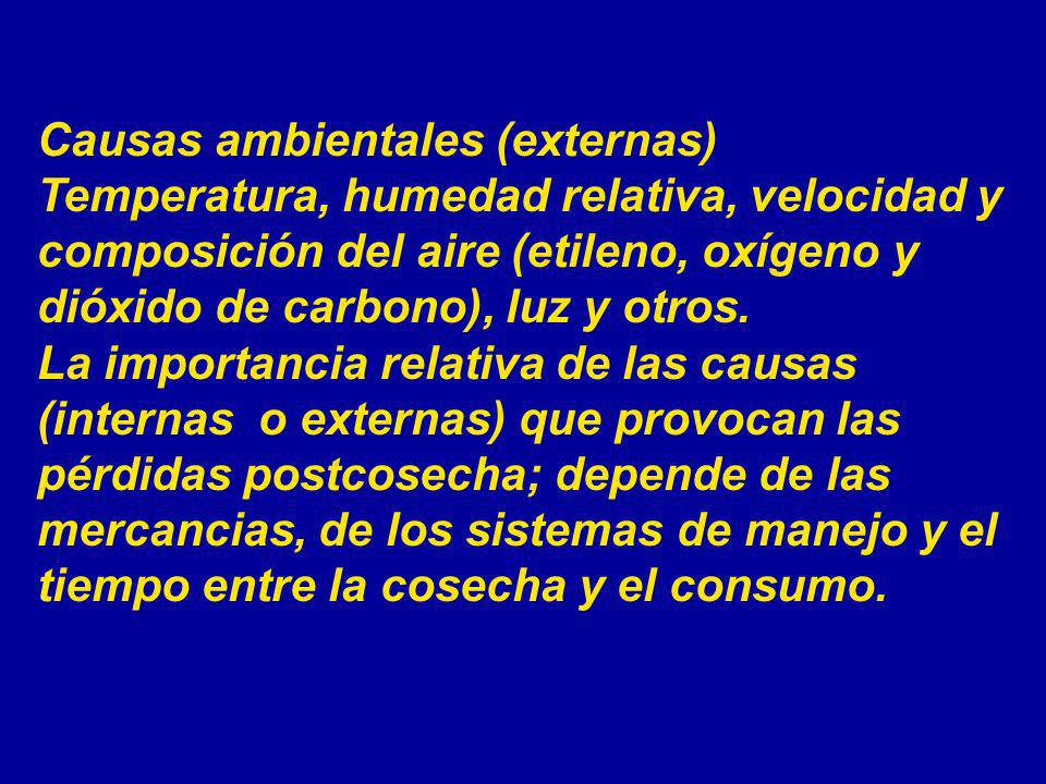 Causas ambientales (externas)